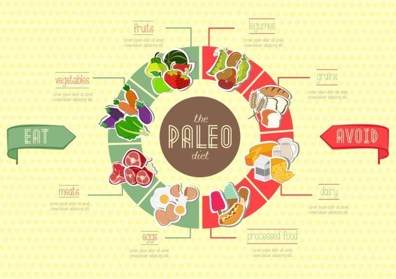 salah satu portofolio jasa desain grafis kontenesia, infografis tentang diet paleo